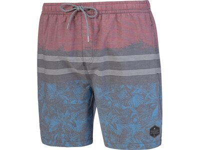 PROTEST MOSTON Beachshort Grau