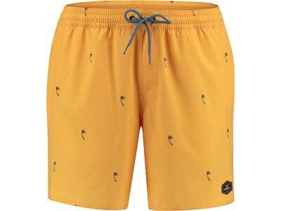 O`NEILL Herren Shorts PM MINI PALMS SHORTS Orange