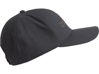 ICEBREAKER Herren Icebreaker Logo Hat Grau