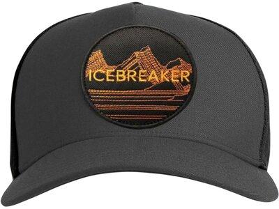 ICEBREAKER Herren Icebreaker Graphic Hat Grau