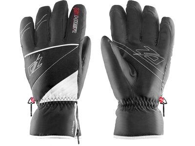 ZANIER Handschuhe RAURIS.GTX® Schwarz