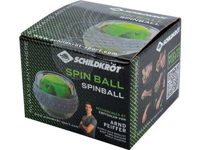 Schildkröt Fitness Spinball Grün