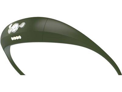 KNOG Bandicoot Grau
