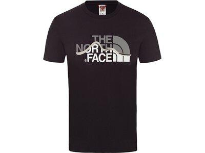 "THENORTHFACE Herren T-Shirt ""Mountain Line"" Schwarz"