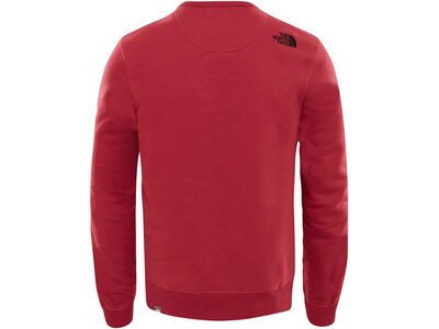 """THENORTHFACE Herren Sweatshirt """"Drew Peak"""" Rot"""
