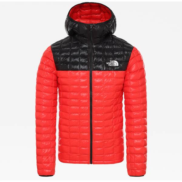 THE NORTH FACE Herren Funktionsjacke M TBLL ECO