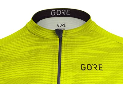 GORE WEAR Herren Shirt C3 Knit Grün