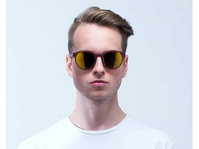 Red Bull SPECT Sonnenbrille LACE Braun