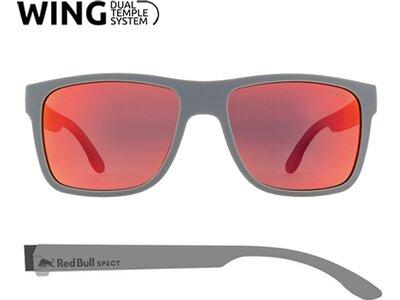 WING1 RED BULL SPECT GJ 2019 Grau