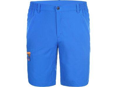 ICEPEAK Herren Shorts MEDWIN Blau