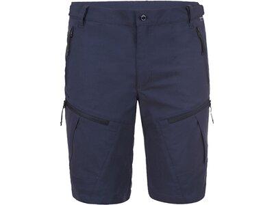 ICEPEAK Herren Shorts ELLIS Blau