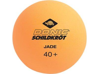 DONIC SCHILDKRÖT TT-BALL, 1T-TRAINING 40 MM, 12 STÜCK Orange