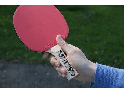 Donic-Schildkröt Tischtennisschläger Champs Line 150 Braun