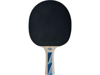 SCHILDKRÖT Tischtennisschläger LEGENDS 700 FSC Blau