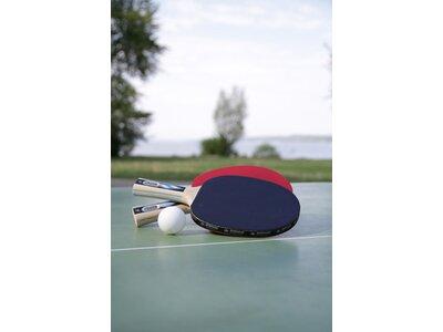 Donic-Schildkröt Tischtennisschläger Ovtcharov 1000 FSC Grau