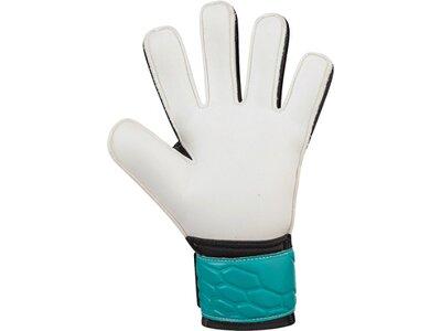 JAKO Equipment - Torwarthandschuhe TW-Handschuh Prestige Basic RC Kids Grau