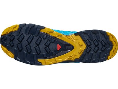 "SALOMON Herren Trailrunning-Schuhe""XA PRO 3D V8 GORE-TEX"" Grau"