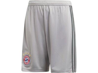 "ADIDAS Kinder Fußballshorts ""FC Bayern Home Goalkeeper Shorts"" Saison 2018/2019 Grau"