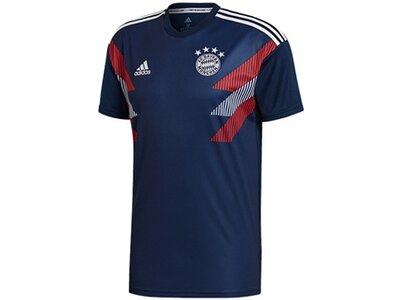 ADIDAS Replicas - T-Shirts - National FC Bayern München Prematch Shirt Blau
