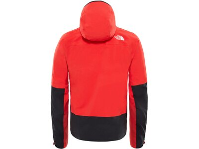 "THENORTHFACE Herren Outdoorjacke ""Apex Flex Gore-Tex 2.0"" Rot"