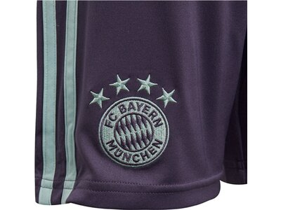 "ADIDAS Kinder Fußballshorts ""FC Bayern Away Saison 2018/2019"" Grau"