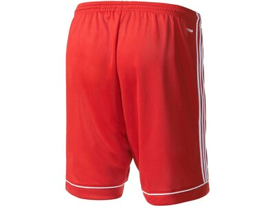 ADIDAS Herren Squadra 17 Shorts Rot