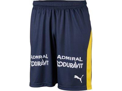 "PUMA Herren Handballshorts ""RNL Home Short"" Grau"