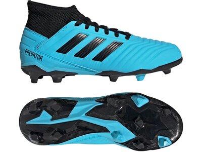 ADIDAS Fußball - Schuhe Kinder - Nocken Predator Virtuso 19.3 FG J Kids Schwarz