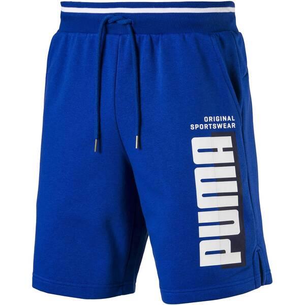 PUMA Herren Shorts | Bekleidung > Shorts & Bermudas > Shorts | Puma
