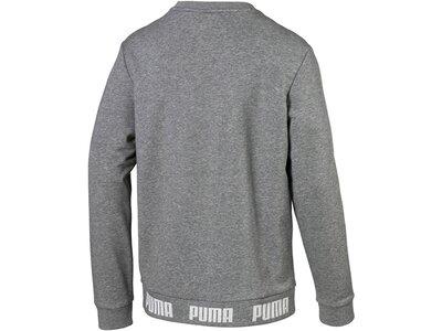 PUMA Herren Sweatshirt Grau