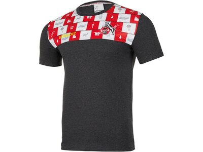 UHLSPORT Replicas - T-Shirts - National 1. FC Köln Karneval T-Shirt Grau