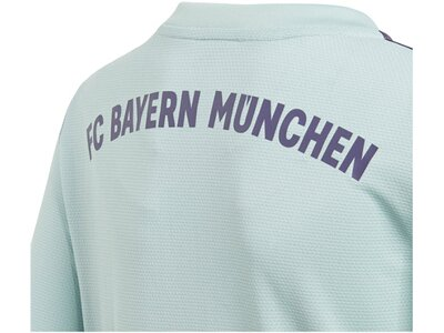 "ADIDAS Kinder Auswärtstrikot ""FC Bayern Away Saison 2018/2019"" Silber"