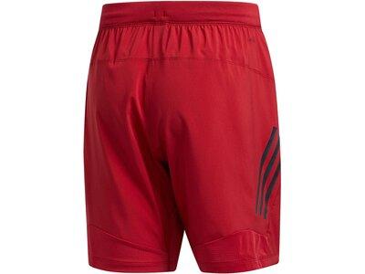 ADIDAS Herren Shorts Lila