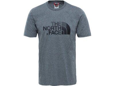 THE NORTH FACE Herren T-Shirt Easy Tee Grau