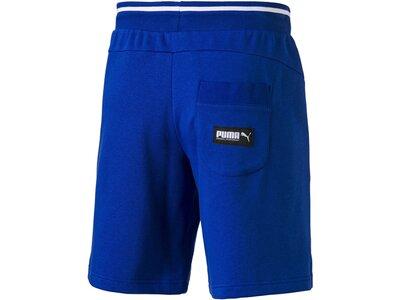 PUMA Herren Shorts Blau