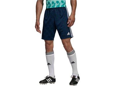 ADIDAS Herren Fußballshorts Blau