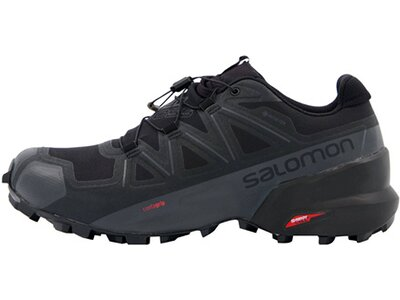 "SALOMON Herren Trailrunningschuhe ""Supercross 5 GTX"" Grau"