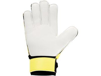 UHLSPORT Equipment - Torwarthandschuhe Soft SF Junior Handschuh Grün
