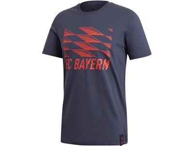 ADIDAS Replicas - T-Shirts - National FC Bayern München T-Shirt Grau
