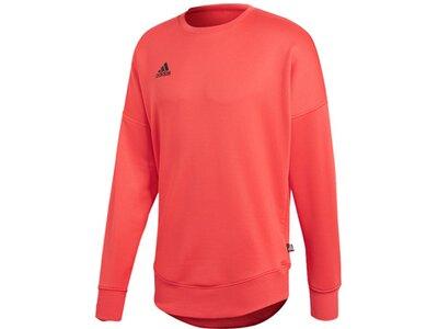 ADIDAS Lifestyle - Textilien - Sweatshirts Tango Terry Jersey Sweatshirt Orange
