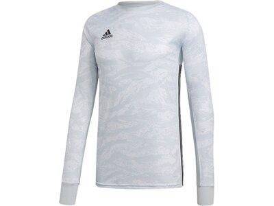 ADIDAS Fußball - Teamsport Textil - Torwarttrikots AdiPro 19 Torwarttrikot langarm Grau