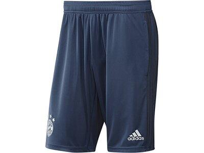 ADIDAS Replicas - Shorts - National FC Bayern München Trainingsshort Grau