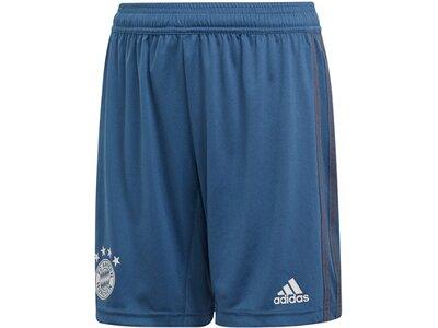 ADIDAS Replicas - Shorts - National FC Bayern München Trainingsshort Kids Blau