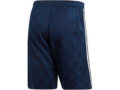 ADIDAS Fußball - Teamsport Textil - Shorts Tango Jacquard Short ADIDAS Fußball - Teamsport Textil - Blau