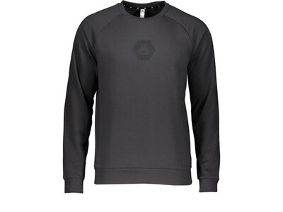 ADIDAS Lifestyle - Textilien - Sweatshirts Tango Logo Sweatshirt langarm Grau
