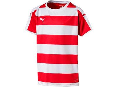 PUMA Fußball - Teamsport Textil - Trikots LIGA Hooped Trikot kurzarm Kids Pink