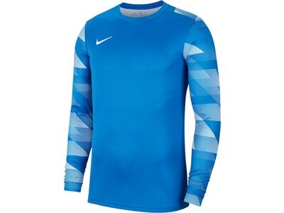 NIKE Fußball - Teamsport Textil - Torwarttrikots Park IV TW-Trikot langarm Kids Blau