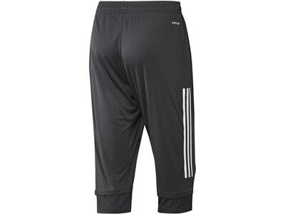 ADIDAS Replicas - Shorts - Nationalteams DFB Deutschland 3/4 Pant Hose Grau
