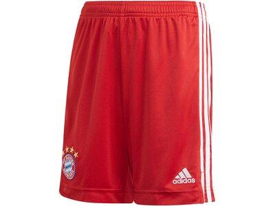 ADIDAS Replicas - Shorts - National FC Bayern München Short Home 2020/2021 Rot