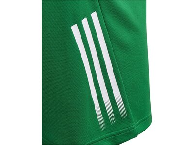 ADIDAS Jungen T-Shirt Grün